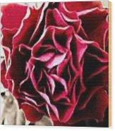 Wild Rose Wood Print