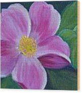Wild Rose Study 6 Wood Print