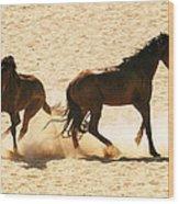 Wild Stallion Clash Wood Print