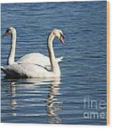 Wild Swans Wood Print by Sabrina L Ryan