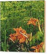 Wild Tiger Lilies 2 Wood Print