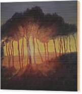 Wild Trees At Sunset Wood Print