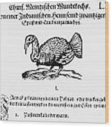Wild Turkey, 1604 Wood Print