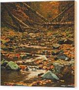 Wild Valley Wood Print