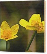 Wild Yellows Wood Print