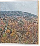 Wildcat Mountain Gold Wood Print