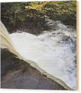 Wilderness Waterfall Autumn Stream Wood Print