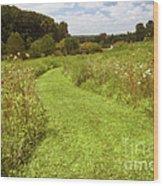 Wildflower Field Morning Wood Print
