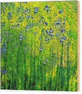Wildflower Impression By Jrr Wood Print by First Star Art