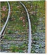 Wildflower Railroad Wood Print
