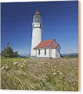 Wildflowers And Cape Blanco Lighthouse Wood Print