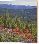 Wildflowers And Mountaintop View Wood Print by Ellen Thane and Photo Researchers