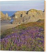 Wildflowers And Rock Formations Along Wood Print