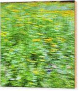 Wildflowers And Wind 2 Wood Print by Skip Nall