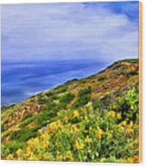 Wildflowers At Point Loma Wood Print