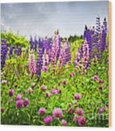 Wildflowers In Newfoundland Wood Print