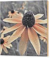 Wildflowers Of Ontario Wood Print