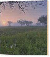 Wildflowers On A Foggy Pasture Wood Print