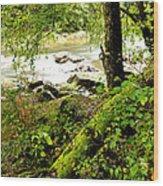 Williams River Wood Print by Thomas R Fletcher