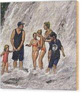 Willow River Falls Wood Print