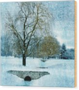 Willow Trees By Stream In Winter Wood Print