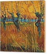 Willows At Sunset Wood Print