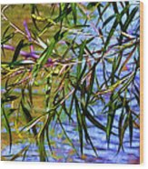 Willows At The Pond Wood Print