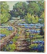 Wimberley's Bluebonnets Wood Print
