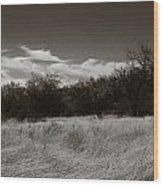 Wind Blown Grass 2 Wood Print