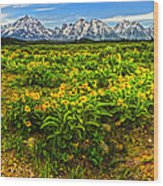 Wind River Range In West Central Wyoming - 03 Wood Print