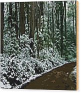 Winding Forest Trail In Winter Snow Wood Print