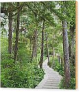Winding Path Wood Print by Ivan SABO