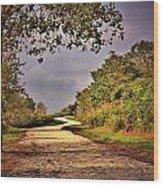 Winding Path Wood Print