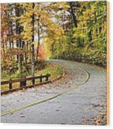 Winding Road Wood Print