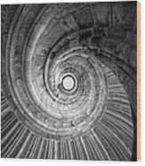 Winding Staircase Wood Print