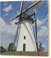 Windmill And Blue Sky Wood Print by Carol Groenen
