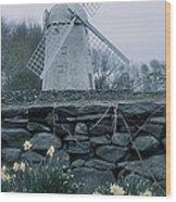 Windmill And Daffodils  Wood Print