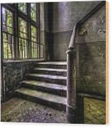 Window And Stairs Wood Print by Nathan Wright
