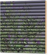 Window Blinds Prints Wood Print