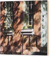 Window Boxes Greenwich Village Wood Print