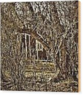 Window Of Roots Wood Print
