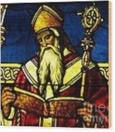 Window Of Saint Agustine Wood Print