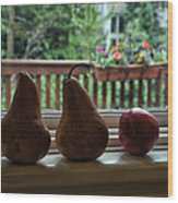 Windowsill 1 Wood Print