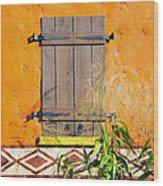 Window To Africa Wood Print