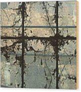 Window Vines Wood Print