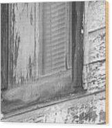 Window With Screen Wood Print