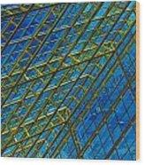 Windows And Reflections No.1058 Wood Print