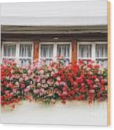 Windows With Red Flowers Wood Print