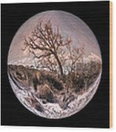 Windswept At Driftwood Beach II Wood Print by Debra and Dave Vanderlaan