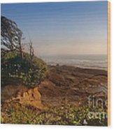 Windswept Coast Wood Print